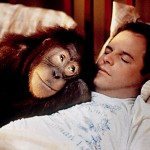 The top 10 greatest films starring prime apes…